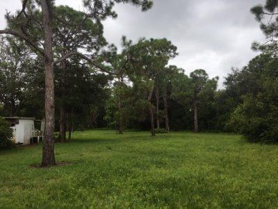 Pine Ridge Estates Lot 2 pic 2