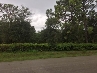 Pine Ridge Estates Lot 2 pic 3